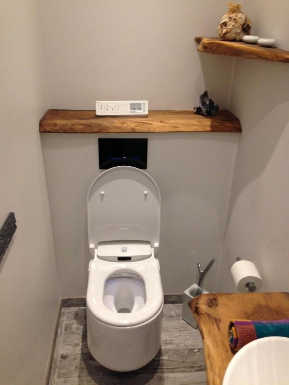 beispiel dusch wc montage komplettanlage grohe sensia arena