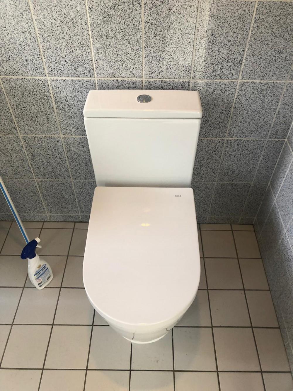 roca in-wash stand-wc deutschland dusch wc