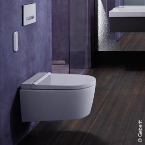 Geberit AquaClean Sela Wand-Dusch-WC Komplettanlage